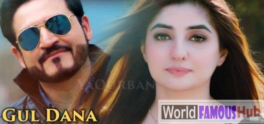 Ala Gul Dana Dana Song Lyrics (Zeek Afridi and Gul Panra)
