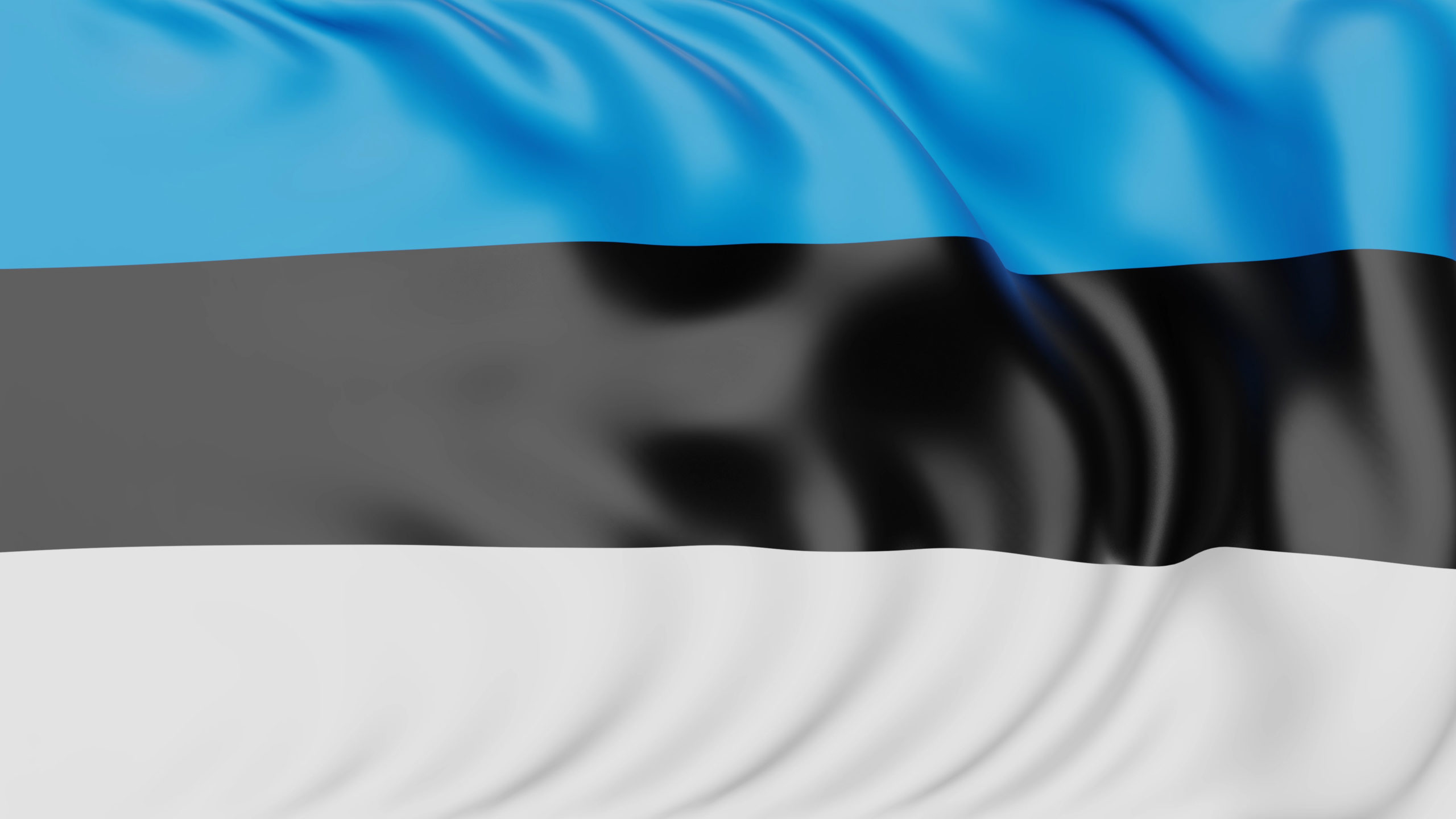 What is Estonia Famous For?