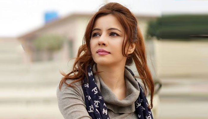 Rabi Pirzada Biography, Wiki, Age, Height, Song & Life Style