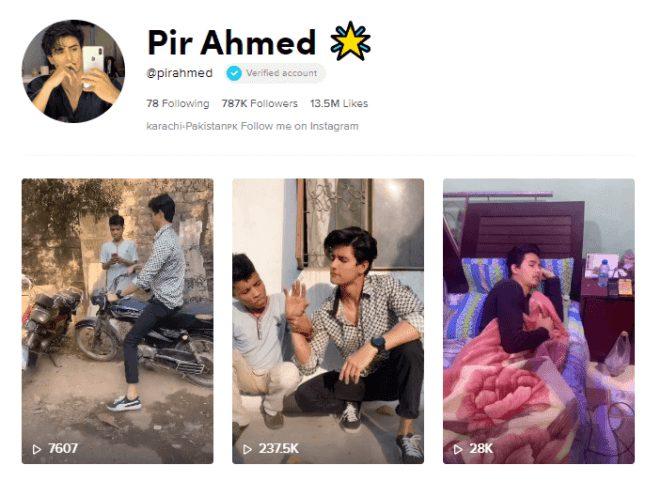 Top 10 Most Famous Pakistani TikTokers