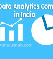 Top 100 Data Analytics Companies in India